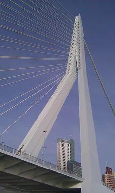 Erasmusbridge Rotterdam  Places I have been