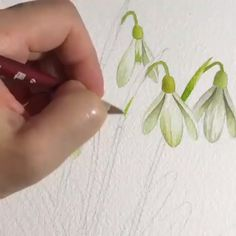 Watercolor painting for beginners beautiful flower Art Tutorial Art tutorial beginner Beautiful Beginners flower painting Watercolor Watercolor Paintings For Beginners, Watercolor Video, Watercolor Art, Watercolor Flowers Tutorial, Flower Tutorial, Watercolour Flowers, Art Floral, Botanical Art, Watercolor Illustration