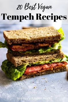 A collection of 20 of the most delicious vegan tempeh recipes including tempeh bowls, sandwiches, tacos, soups, curries and pasta dishes. Be inspired by these creative ways to incorporate tempeh into your vegan diet! Best Chocolate Fudge Recipes, Vegan Probiotics, Vegan Ground Beef, Jackfruit Sandwich, Vegan Bolognese, Tempeh Bacon, Baked Avocado, Vegan Mac And Cheese