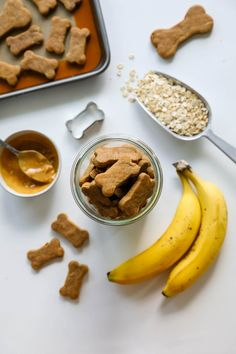 3 ingredient homemade dog treats made with old fashioned rolled oats, natural peanut butter, and banana. Perfect for your pups and human friendly, too! Dog Cookie Recipes, Easy Dog Treat Recipes, Dog Biscuit Recipes, Dog Food Recipes, Easy Homemade Dog Treats, Vegan Dog Biscuit Recipe, Homemade Dog Biscuits, Dinner Recipes, Homemade Recipe