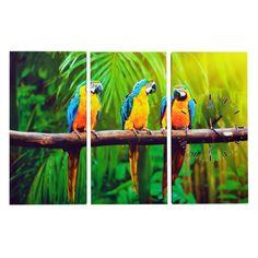 Een 3luik Canvas Schilderij met Klok met prachtige afbeelding van drie Papagaaien #wandklok #wanddecoratie #Canvasklok #papagaai