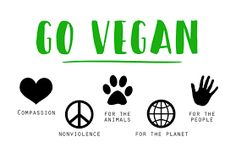 Vegan Nutrition: three Not unusual Errors New Vegans Make & How You Can Steer clear of Them