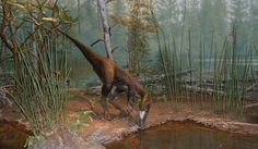 """""""Paleontólogos descubren una nueva especie de un dinosaurio"""". LA VOZ DE RUSIA. 5 OCT 2012."""