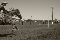 pole bending, would love to have a picture like this one day Western Riding, Horse Riding, Pole Bending, Nike Quotes, Cross Country Running, Wild Spirit, Runners World, Half Marathon Training, Barrel Racing