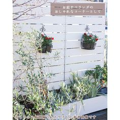 Outdoor Structures, Plants, Products, Flora, Plant, Gadget