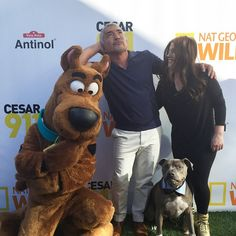 """Thank you @RebeccaCorry for coming out today! #JuniorMeet #Cesar911"" Photo taken by @cesarsway on Instagram, pinned via the InstaPin iOS App! http://www.instapinapp.com (03/13/2015)"