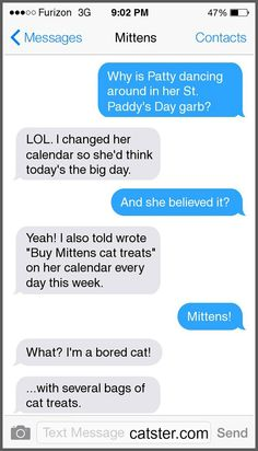 Texts From Mittens: The Leprechaun Edition | Catster
