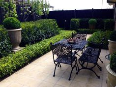 Andrew Stark Garden Design: Hedges are star jasmine and the taller is Portugal laurel.