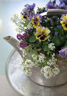 Pansies in a teapot..