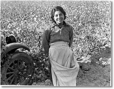 Cotton picker. Southern San Joaquin Valley, California; Dorothea Lange, photographer, November 1936; Eyes of the Great Depression 002; http://www.zazzle.com/exit78/migrant+worker+next+to+a+cotton+field+gifts  http://www.zazzle.com/exit78*