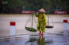 Kết quả hình ảnh cho huế mưa