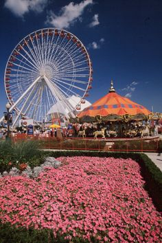 Navy Pier attractions include the 150-foot tall Ferris Wheel, which opened in 1995. Operating year-round, it has 50 gondolas, each seating up to 6 passengers.