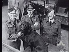 English RAF flying ace Johnny Johnson with his pet dog, along with Australian & New Zealand commanders - World War 2