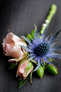 We're going crazy for the blue thistle wedding flower trend! A little thistle makes for a lot style. See what thistle can do for a simple rose bouquet. Thistle Boutonniere, Thistle Bouquet, Corsage And Boutonniere, Boutonnieres, Rose Bouquet, Blue Wedding Flowers, Wedding Bouquets, Wedding Buttonholes, Prom Flowers