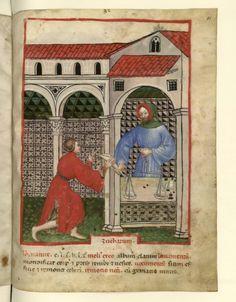 Nouvelle acquisition latine 1673, fol. 81, Marchand de sucre. Tacuinum sanitatis, Milano or Pavie (Italy), 1390-1400.