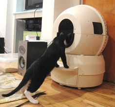 This self-cleaning litter robot that looks like it might eat your cat. | 22 Totally Ludicrous Products For Cat Owners