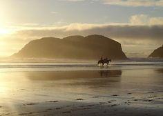 Horseback ride on the coast