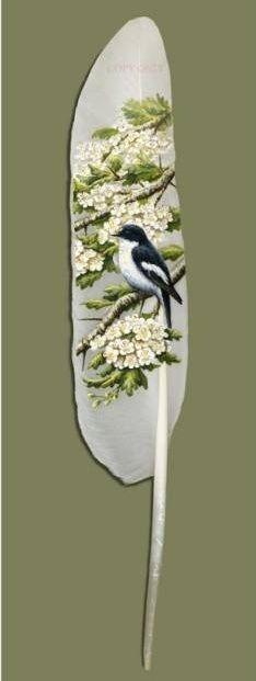 Feather Art Ian Davie