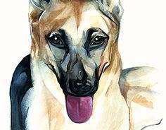 "Check out new work on my @Behance portfolio: ""Watercolour Dog"" http://be.net/gallery/34410495/Watercolour-Dog"