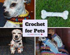 17 Patterns: Crochet for Pets | Have you ever crocheted a sweater for your furry friend?