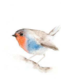 Little Red Breasted Bird - Original Watercolor Painting Watercolor Bird, Watercolor Animals, Watercolor Paintings, Watercolours, Red Breasted Bird, Bird Illustration, Bird Art, Beautiful Birds, Painting Inspiration