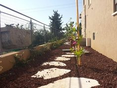 A simple path in a new garden