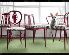 Different styled chairs get a cohesive look with paint and fabric.