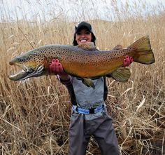 Wow, huge brown!!! Obvious arm extension picture, but awesome fish none the less.