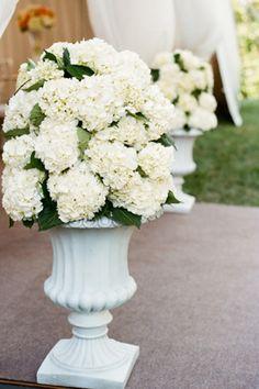 Lots of white hydrangeas in big white vases