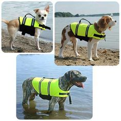 Paws Aboard Designer Doggy Life Jacket - Yellow