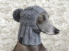 Jewelry stands Trade show displays For Craft Shows Display Italian Greyhound, Pom Dog, Dog Snood, Cable Knit Hat, Dog Sweaters, Christmas Dog, Pet Clothes, Dog Accessories, Dog Pictures