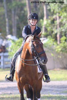 I have been riding horses since I was 5. I have been professionally training horses since I was 17. Training horses is a bit like being a personal trainer. Everyone has a different way of doing thi…