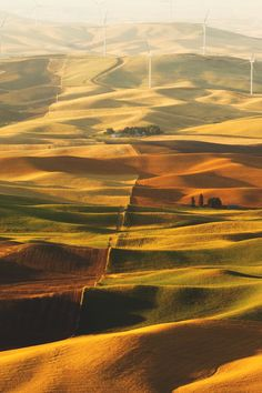 Palouse Hills, Washington | Arindam Sen