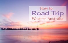 Road trip around Western Australia Cottesloe Beach, Sea Sculpture, Family Road Trips, Family Travel, Kings Park, Tree Tops, Train Tracks, Western Australia, Adventure Travel