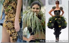 A Colombian fashion show where the clothes are made from plants, flowers, fruit, leaves and organic matter. The far right shows airplants in a creation by designer Angelo Restrepo : Biofashion Habitat show Cali November 26, 2011. Photo REUTERS/Jaime Saldarriaga
