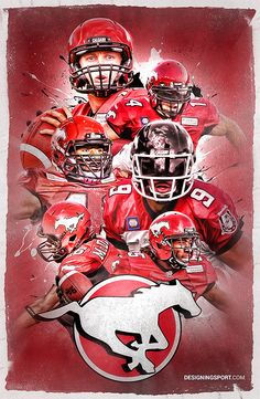 2014 Calgary Stampeders (Bo Levi Mitchell e72db2a70