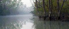 Sundarbans, Bay of Bengal