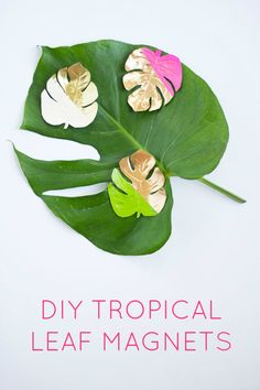 add some ~tropical flair~ to your fridge with these DIY magnets
