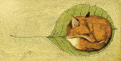 tiny fox.