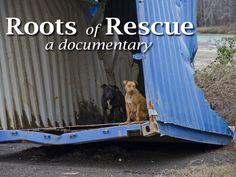 Roots of Rescue by Joe Olivieri and David Cowardin, via Kickstarter.