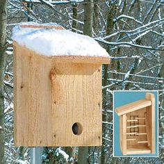 Winter Roost. This ingenious roost provides much-needed protection from winter's cold. It will attract birds that nest in cavities or nest boxes, such as Chickadees, Wrens, Nuthatches, Titmice, smaller Woodpeckers and Bluebirds. The entrance hole is low to preserve heat inside the roost, and eight perches and two mesh wire strips make it easy for birds to get close together for warmth. Plus, the hinged floorboard makes cleaning easy.