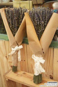 #lavender #Lingzakka