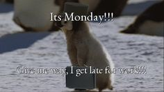 Ohhh…!!! He felt today is #Sunday so he got up late. Don't worry, get rid of your stress of being late by playing games here be ready for #Monday work
