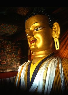 giant copper with gilded gold statue of a seated Shakyamuni Buddha at Shey Gompa - Shey was the summer capital of Ladakh in the past.