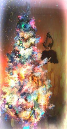 My Magical Christmas Tree. #MerryChristmas #bellawhite