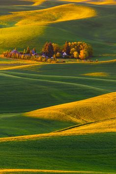 At The Base Of The Valley - Steptoe Butte State Park, Washington, United States.