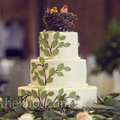I LOVE the idea of a tree motif on a wedding cake with two birds at the top.  This cake in particular isn't my favorite, but I do like the concept. I would change the birds to BLUEBIRDS
