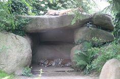 Photo Normandie - Zoo de Champrépus
