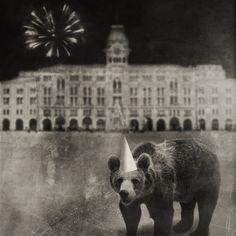 Animaly 16 by Krzysztof Władyka