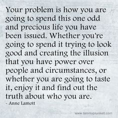 Anne Lamott on this one odd and precious life you have: taste it, enjoy it, and find out the truth. Dream Quotes, Quotes To Live By, Me Quotes, Trauma Therapy, Anne Lamott, Perfection Quotes, Words Worth, Interesting Quotes, Writing Quotes